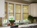 Designer Roller Shades in the family room