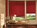 Designer Roman Shades in the office