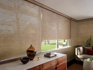 Roller Screen Shades