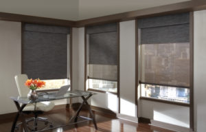Designer Screen Shades in the Living Room